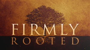 Firmly Rooted Series - Listen Online